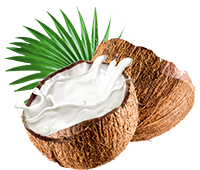 tsoap object coconut